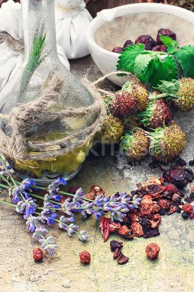 Still life with harvest medicinal herbs Stock photo © nikolaydonetsk