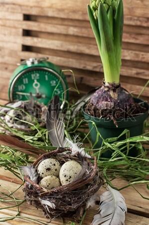 Пасху весны украшение яйца гиацинт цветок Сток-фото © nikolaydonetsk
