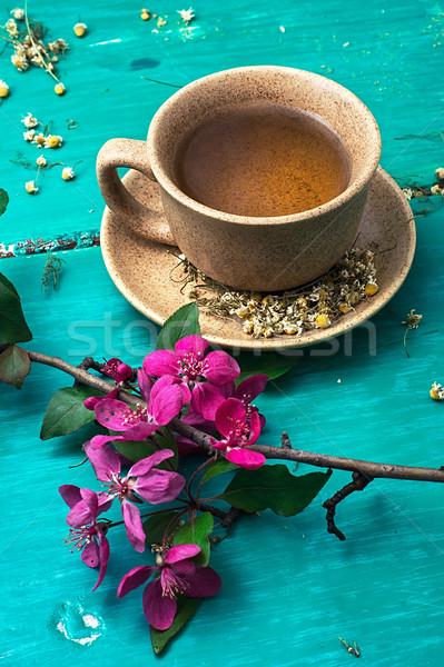 tea brewed with chamomile in ceramic mugs Stock photo © nikolaydonetsk
