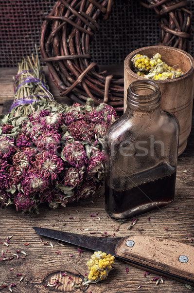 elixir potion of herbs Stock photo © nikolaydonetsk