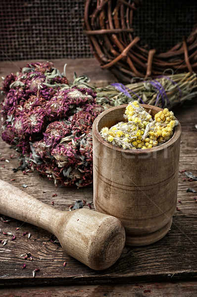 medicinal herb Stock photo © nikolaydonetsk