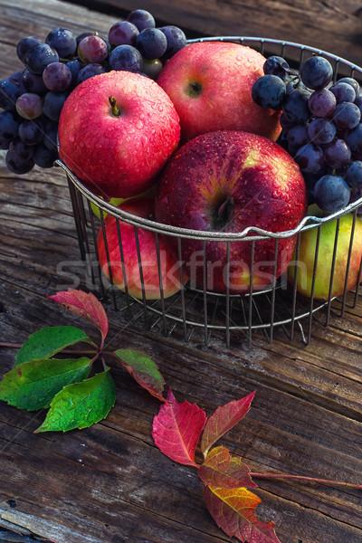 Outono vermelho maçãs colheita maduro uvas Foto stock © nikolaydonetsk