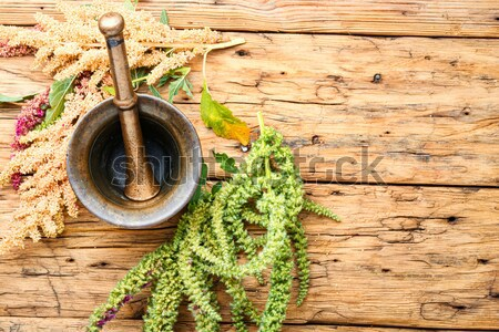 spicy food Stock photo © nikolaydonetsk