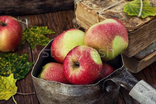 Outono colheita maçãs maçã elegante retro Foto stock © nikolaydonetsk