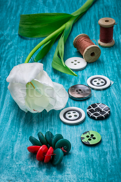 one white tulip and buttons with threads Stock photo © nikolaydonetsk