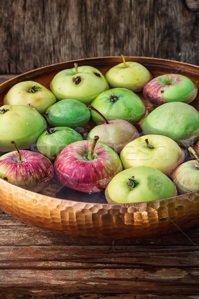 Az küçük elma sonbahar hasat çanak Stok fotoğraf © nikolaydonetsk