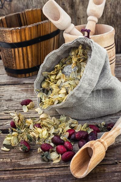 Raccolto hop taglio bag essiccati rustico Foto d'archivio © nikolaydonetsk