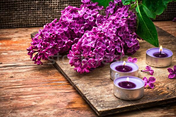 Bush may lilac and lighted candle Stock photo © nikolaydonetsk