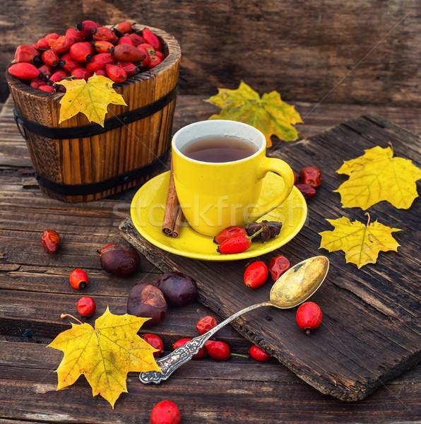 Autumn rose hips tea Stock photo © nikolaydonetsk