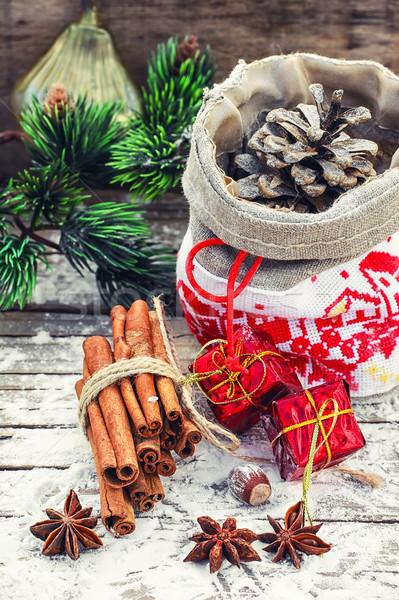 クリスマス 袋 松 刺繍 スパイス 宝石 ストックフォト © nikolaydonetsk