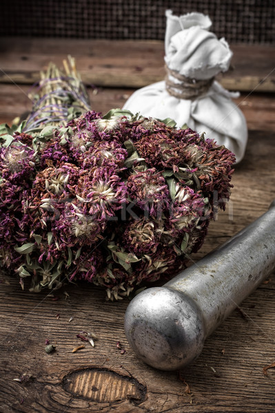 ancient healing recipe of herbs Stock photo © nikolaydonetsk
