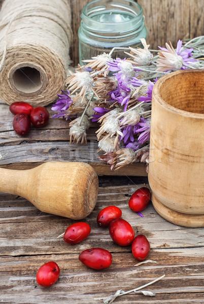 Cornel berries with herbaceous medicinal shrub Stock photo © nikolaydonetsk