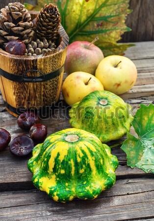 Aratás fallabda ősz rusztikus stílus étel Stock fotó © nikolaydonetsk