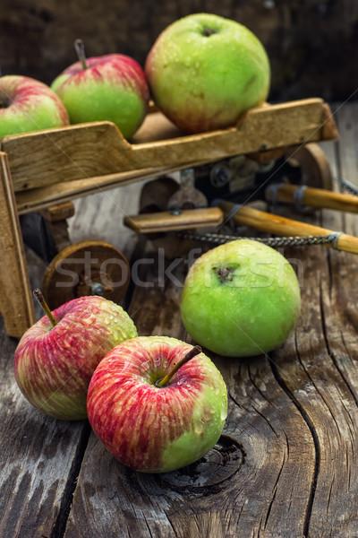 Najaar oogst appels gewas houten achtergrond symbolisch Stockfoto © nikolaydonetsk