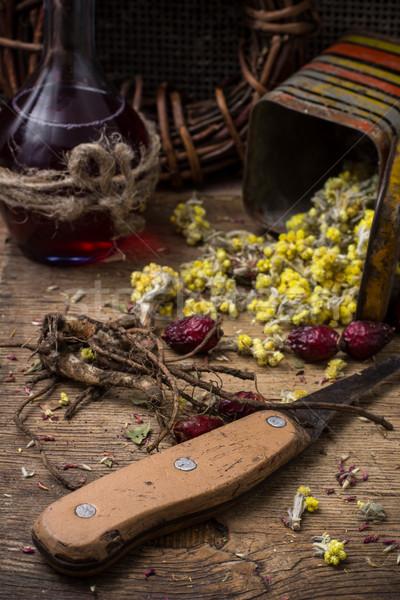 Gyógyászati gyógynövény aszalt gyógynövények hagyományos gyógyszer Stock fotó © nikolaydonetsk