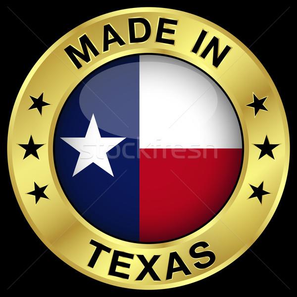 Texas placa oro icono central Foto stock © NiroDesign
