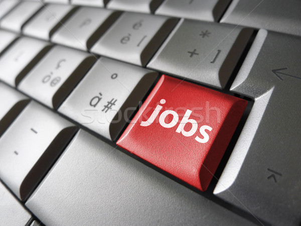 Job Search Key Stock photo © NiroDesign