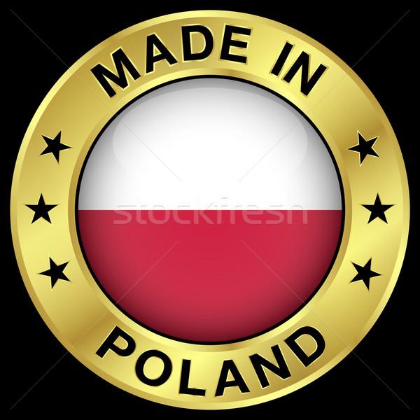 Polonya altın rozet ikon merkezi parlak Stok fotoğraf © NiroDesign