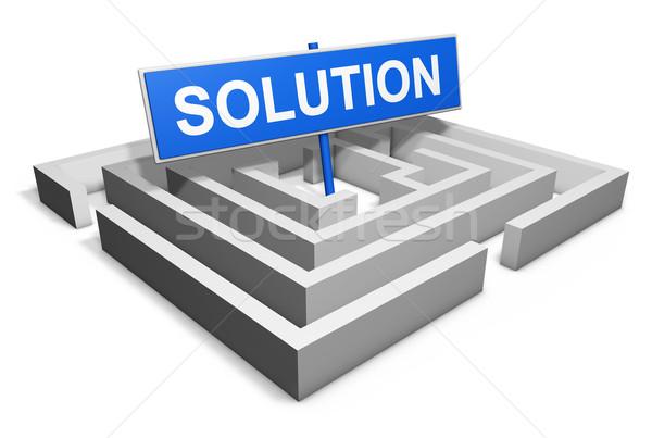 Business soluzione stile di vita labirinto parola blu Foto d'archivio © NiroDesign
