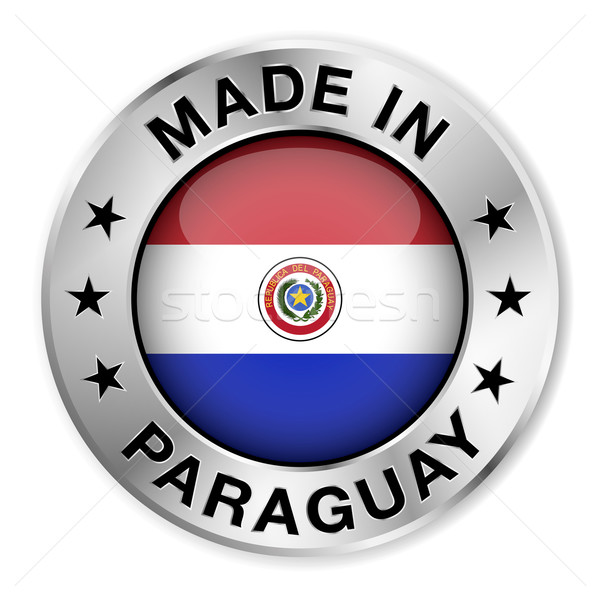 Paraguay argento badge icona centrale lucido Foto d'archivio © NiroDesign