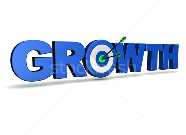 Growth Concept Target Stock photo © NiroDesign
