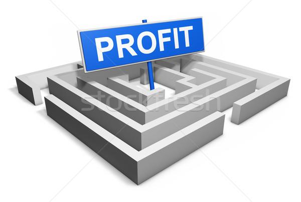 Zysk działalności finansowych inwestycja labirynt słowo Zdjęcia stock © NiroDesign