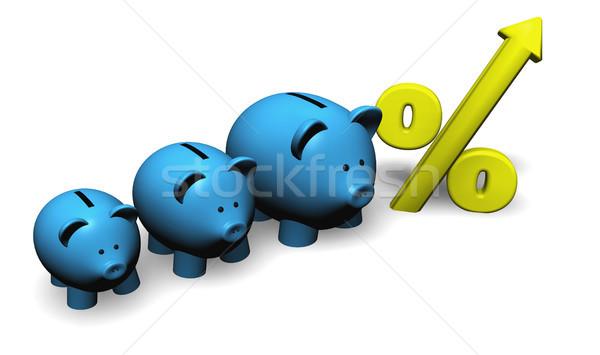 Growth Savings And Investment Concept Stock photo © NiroDesign