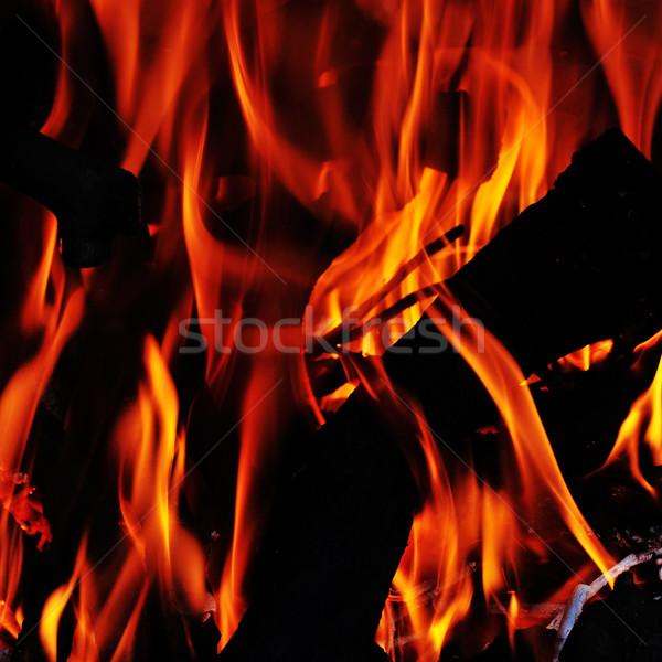 Fuoco fiamme falò camino legno design Foto d'archivio © nito