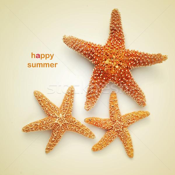 happy summer Stock photo © nito