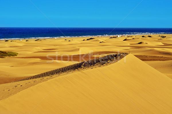 Naturale riserva Spagna view Foto d'archivio © nito