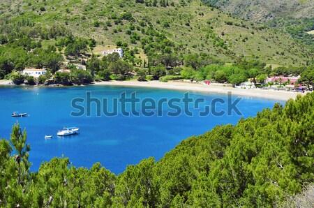 Cala Montjoi beach in Roses, Spain Stock photo © nito