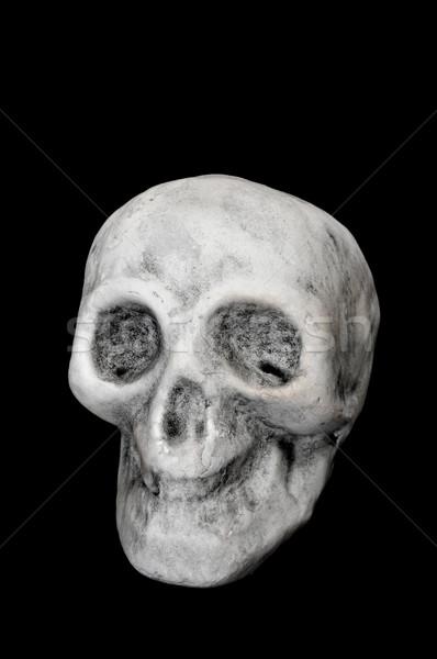 Halloween skull Stock photo © nito