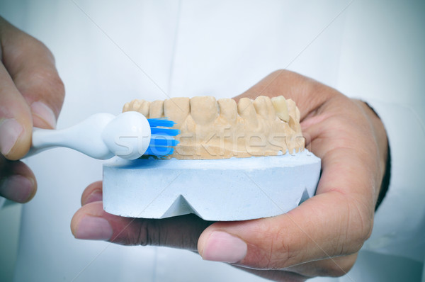 dentist man shows how to brush teeth with a toothbrush Stock photo © nito