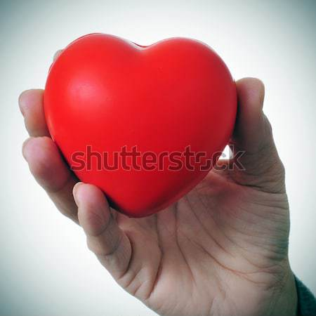 woman hand holding a red heart Stock photo © nito