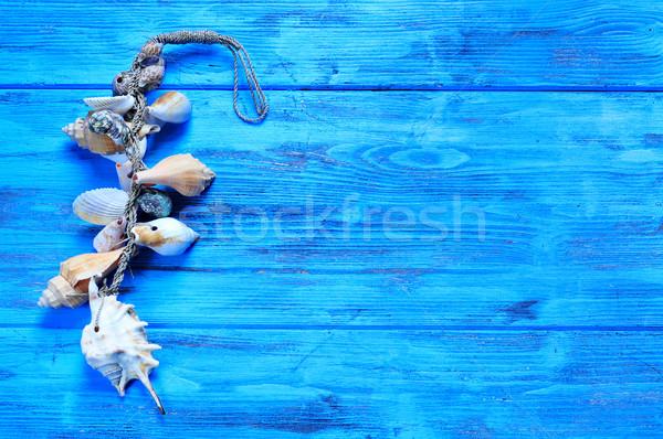 орнамент ракушки синий поверхность деревенский Сток-фото © nito