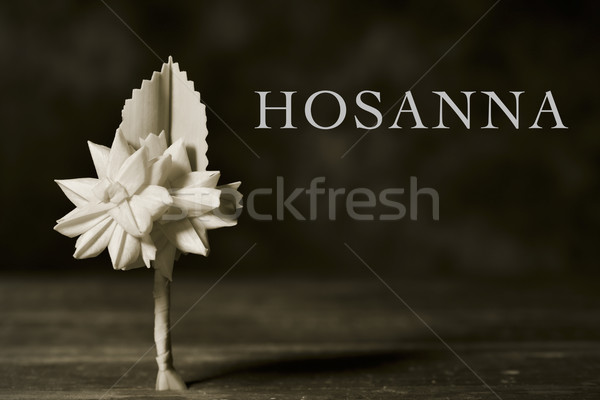 braided palm for Palm Sunday and word hosanna Stock photo © nito