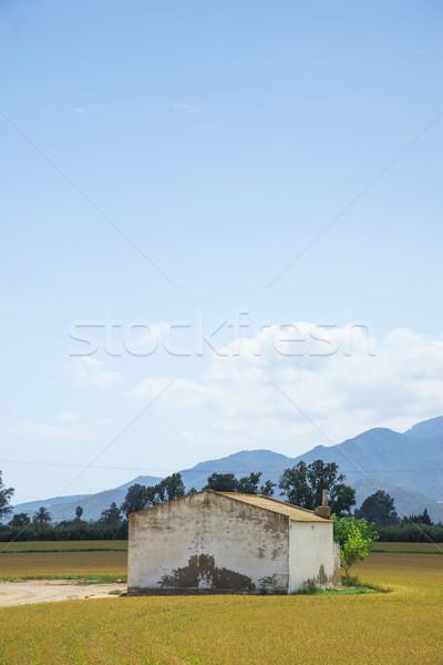 Mező delta Spanyolország kilátás rusztikus menedék Stock fotó © nito