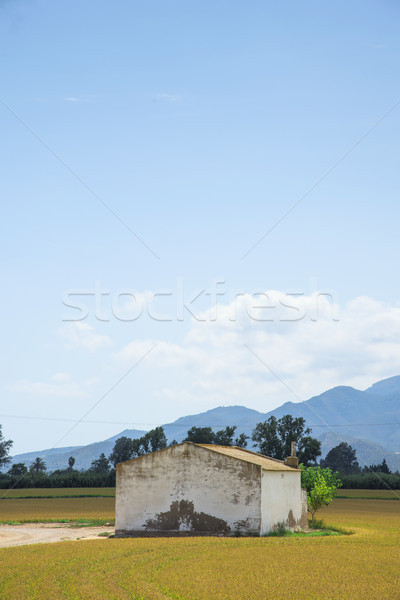 области дельта Испания мнение деревенский приют Сток-фото © nito