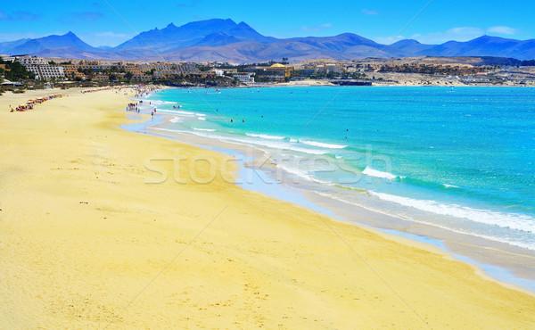 カナリア諸島 スペイン 表示 水 自然 海 ストックフォト © nito
