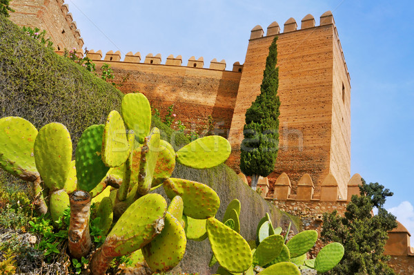 Alcazaba of Almeria, in Almeria, Spain Stock photo © nito