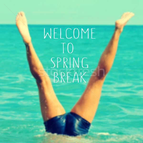 üdvözlet tavaszi szünet szöveg írott elmosódott kép Stock fotó © nito