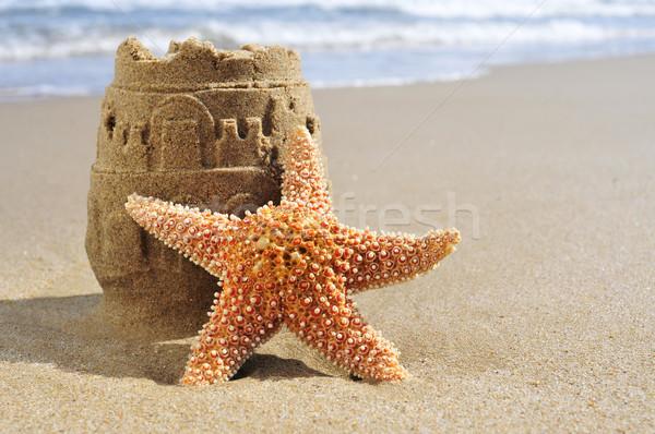 Starfish двухуровневый стробирующий импульс пляж песок морем лет Сток-фото © nito