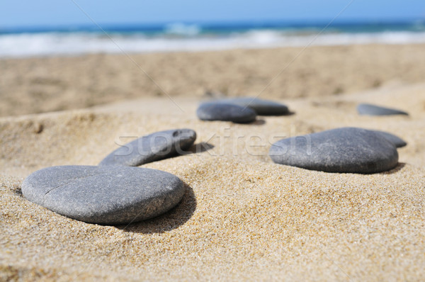 gray flat stones on the sand of a beach Stock photo © nito