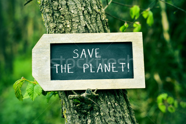 chalkboard with the text save the planet in a tree Stock photo © nito