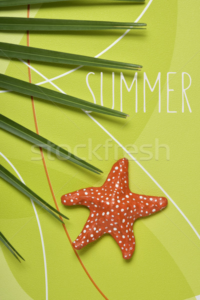 Zeester tekst zomer shot palmboom blad Stockfoto © nito