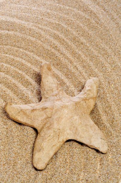 paper-mache seastar on the sand Stock photo © nito