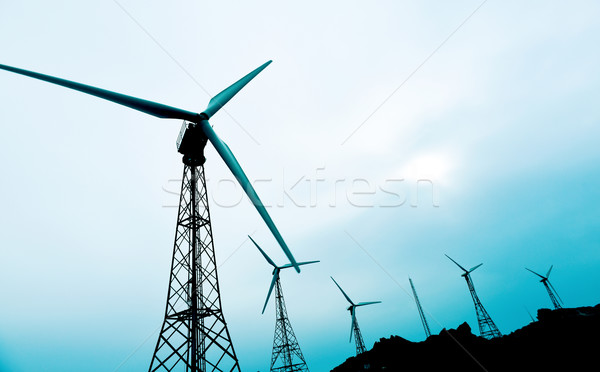 wind turbines in a wind farm Stock photo © nito