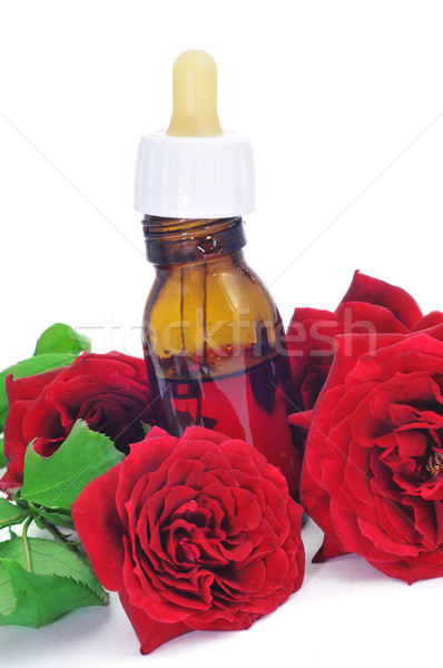 rose essence Stock photo © nito