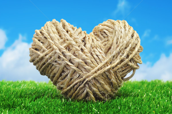 rope heart on the grass Stock photo © nito