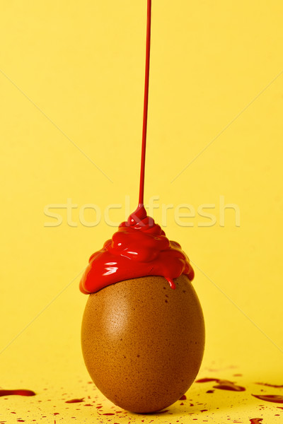 red paint on a brown egg Stock photo © nito